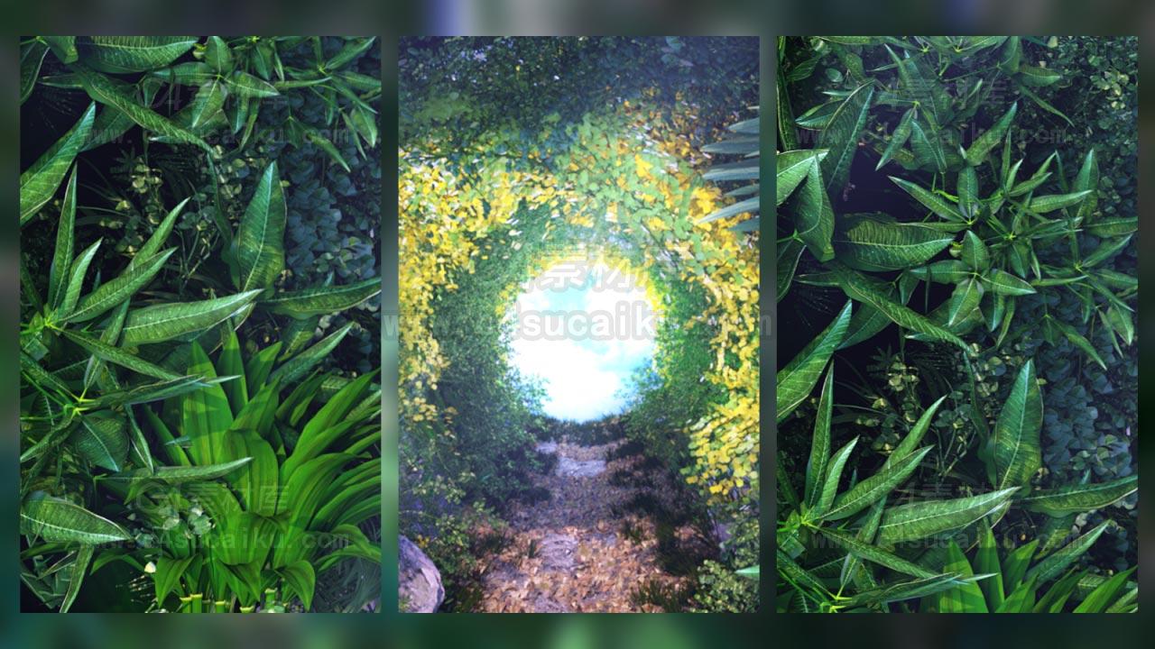 Octane渲染器绿色植物山洞穿梭场景文件