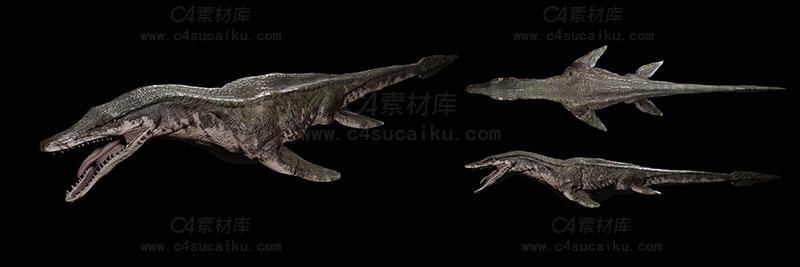C4素材库-海兽模型02